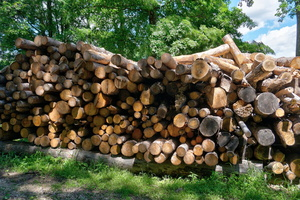 Logs ready for use